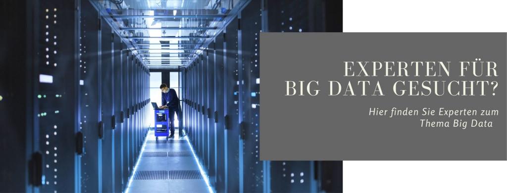 Experten Big Data large
